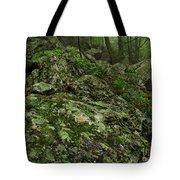 Forest Boulder Field Tote Bag