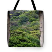 Forest Canopy Through The Window Of The Ruins Tote Bag