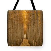 Forest Cathedral - Two Tote Bag
