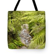 Forest Creek In Lush Rainforest Jungle Of Nz Tote Bag