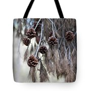 forest decoration - A pine tree give us a natural autumn decoration  Tote Bag