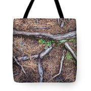 Forest Floor With Tree Roots Tote Bag