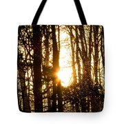 Forest Flurry Lightscape  Tote Bag