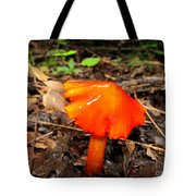 Forest Fungi Flare Tote Bag