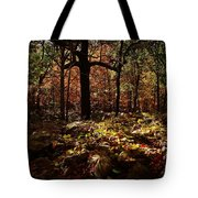 Forest Illuminated Tote Bag by Linda Unger