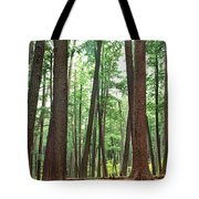 Forest In Early Morning, Wetlands Tote Bag