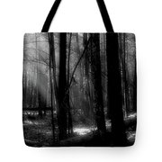 Forest Light In Black And White Tote Bag