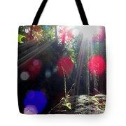 Forest Lightscape Tote Bag