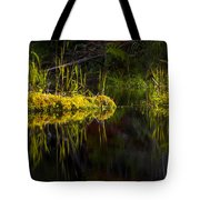 131005b-044 Forest Marsh 1 Tote Bag