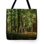 Forest Of Cathedral Grove Collection 1 Tote Bag