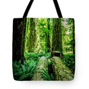 Forest Of Cathedral Grove Collection 9 Tote Bag