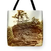 Forest On A Rock Tote Bag