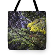 Forest Peace Tote Bag