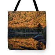 Forest Reflection Tote Bag