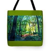 Forest Scene 1 Tote Bag