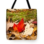 Forest Still Life 5 Tote Bag