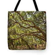 Forest Stroll - The Magical And Mysterious Trees Of The Los Osos Oak Reserve. Tote Bag