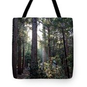 Forest Through The Trees Tote Bag