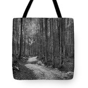 Forest Trail Bw Tote Bag