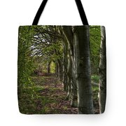 Forest Walk Hdr Tote Bag