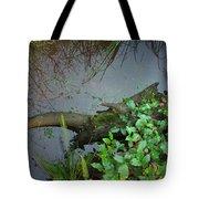 Forest Wetlands I Tote Bag