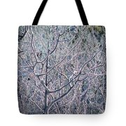 Forests Of Frost Tote Bag