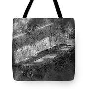 Forgotten Bench Tote Bag