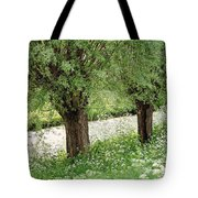 Forgotten Dreams. The Spring Has Arrived. Netherlands Tote Bag