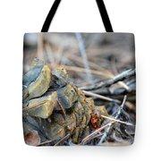 Forgotten Pine Cone 2 Tote Bag