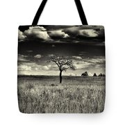 Forgotten Tree Tote Bag