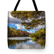 Fort Mountain State Park Lake Trail Tote Bag