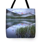 Fortress Mountain Alberta Canada Tote Bag