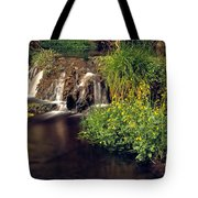 Fossil Creek Tote Bag