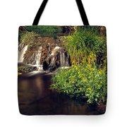 Fossil Creek Tote Bag