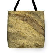 Fossil Leaves Tote Bag