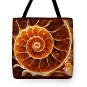 Fossil Nautilus Tote Bag