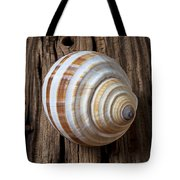Found Sea Shell Tote Bag by Garry Gay