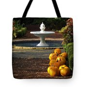 Fountain And Pumpkins At The Elizabethan Gardens Tote Bag