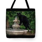 Fountain Cat Tote Bag