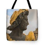 Fountain Detail Tote Bag