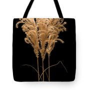 Fountain Grass Tote Bag