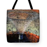 Fountain In The Park Tote Bag
