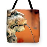 Fountain Lion Tote Bag