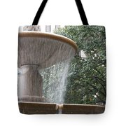 Fountain Of Yewts Tote Bag