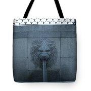 Fountain Seat Tote Bag