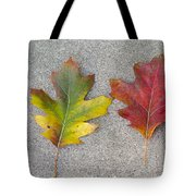 Four Autumn Leaves Tote Bag