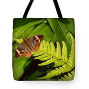Four Eye Butterfly Tote Bag