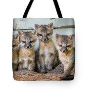 Four Fox Kits Tote Bag