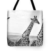 Four Giraffes Tote Bag