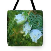 Forest Foursome Tote Bag